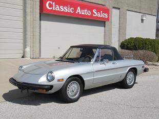 1981 Alfa Romeo Spider Veloce Convertible