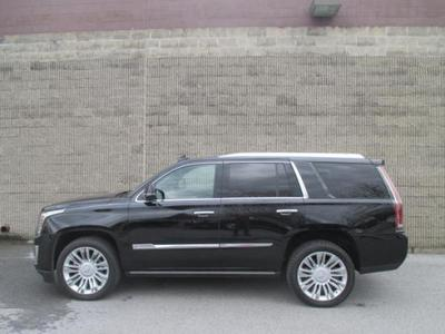 New 2015 Cadillac Escalade Platinum