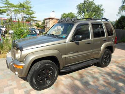 Used 2002 Jeep Liberty Renegade