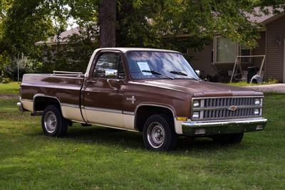 Used 1981 Chevrolet Pickup