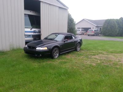 Used 1999 Ford Mustang SVT Cobra