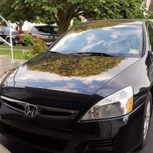 Used 2007 Honda Accord EX-L
