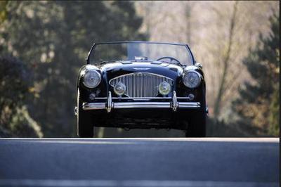 Used 1955 Jaguar