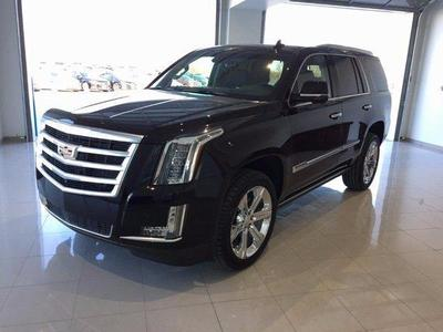 New 2017 Cadillac Escalade Premium Luxury