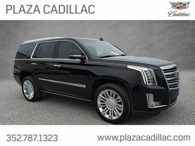 Used Cadillac Escalade For Sale >> Used Cadillac Escalade For Sale In Orlando Fl Cars Com