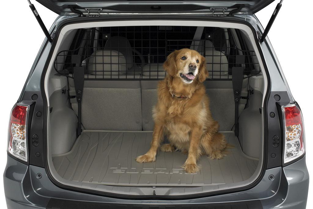 Five Favorite Automaker Pet Accessories   News   Cars.com