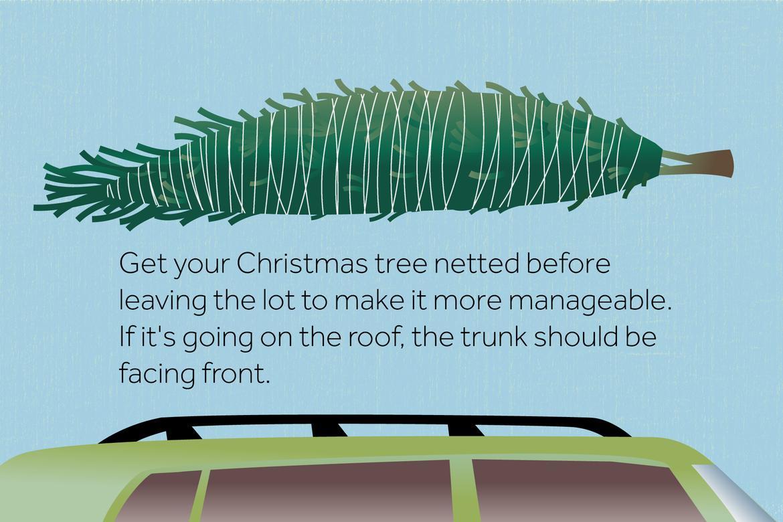 Christmas tree hauling tip