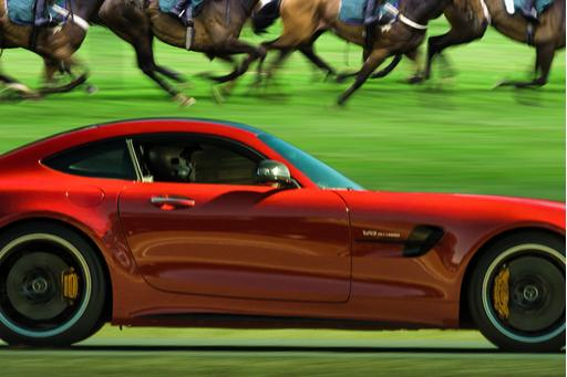 Horsepower Vs. Horses: How Much HP Drives the Kentucky Derby?