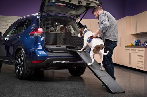 5 Ways Nissan's Rogue Dogue Pampers Your Pooch
