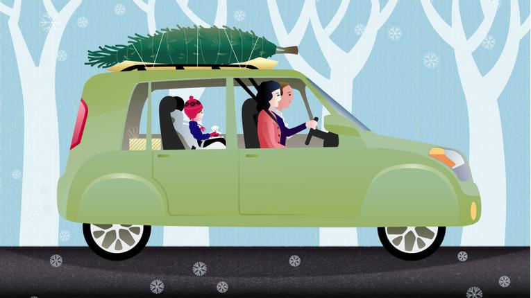 Protect Your Car With Our Christmas Tree Transporting Tips
