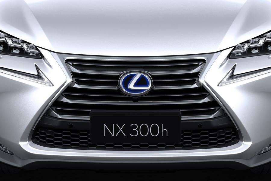 2015 Lexus NX 300h Photo 5 of 25